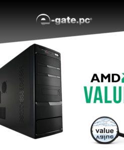 EGATE-AMDvalue_2